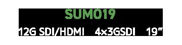 SUMO19
